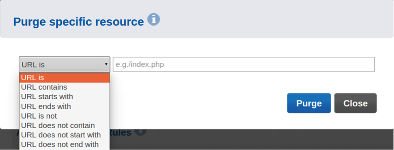 How Purge Cache Keeps Your Website Content Fresh and Responsive
